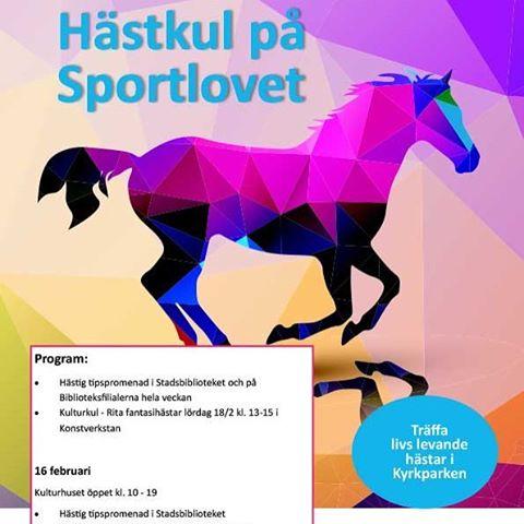 Hstkul p sportlovet i Skvde! Skara Hstlands projekt Konstnrliga hstarhellip